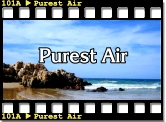 Purest Air
