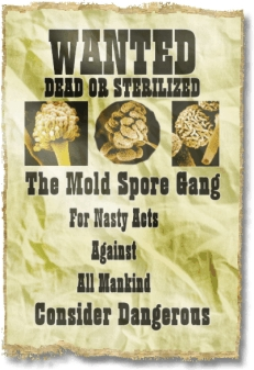 Wanted poster - The Mold Spore Gang